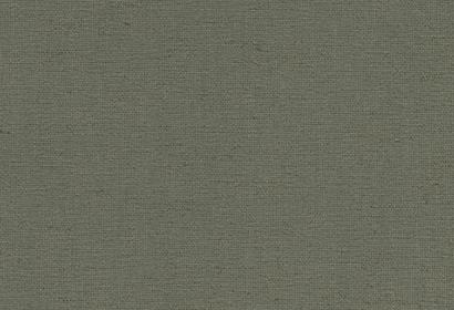 Linen Dove