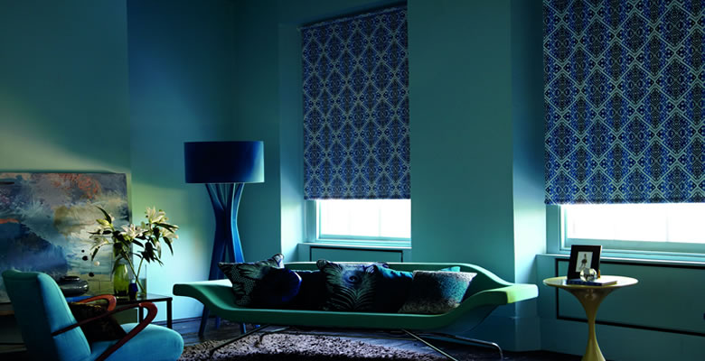skylightblinds(1)
